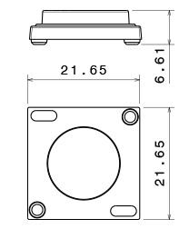 VIOLETTA lens size